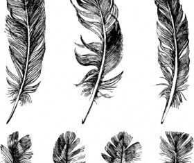 Hand drawn black feather vecors 01