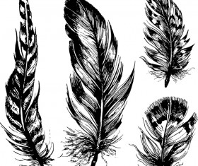 Hand drawn black feather vecors 02