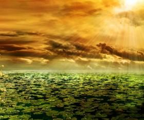 Hawthorn landscape photography Stock Photo