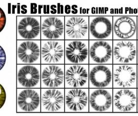 Iris photoshop brushes