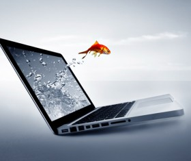 Jump out of the notebook goldfish HD picture