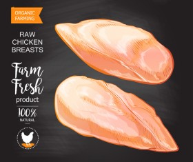 Organic chicken meat poster vector 01