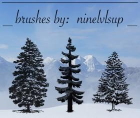 Pine Tree photoshop brushes