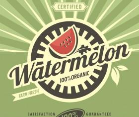 Watermelon poster vintage vectors