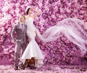 Wedding photographs of newlyweds Stock Photo 04