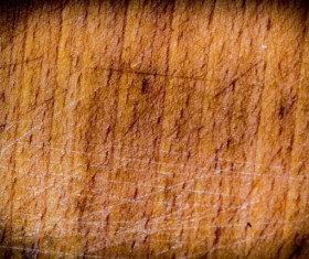 Wood background texture Stock Photo 14