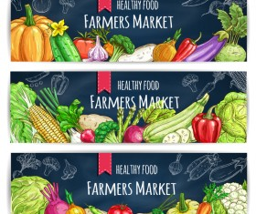 3 Kind Healthy vagetables banners vector