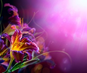 Abstract Floral Background HD picture 02