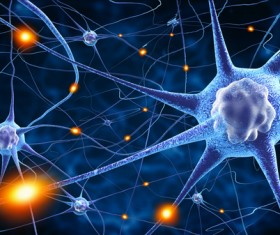 Active nerve cells Stock Photo 05