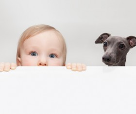 Baby and dog HD picture 01