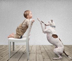 Baby and dog HD picture 02
