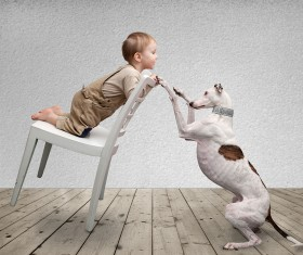 Baby and dog HD picture 04