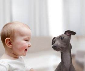 Baby and dog HD picture 05