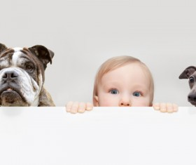 Baby and dog HD picture 07