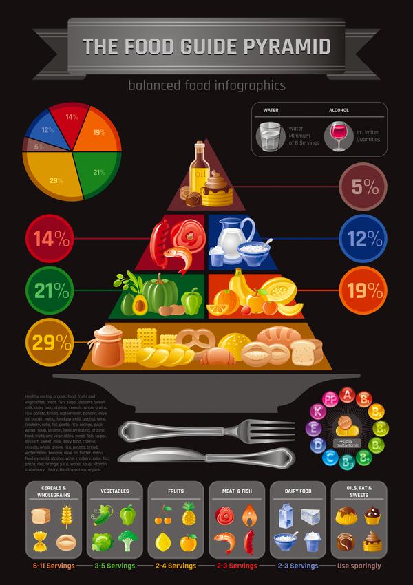 balanced food pyramid infographics template vector 06 free download