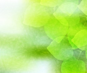 Blurs green leaves vector background