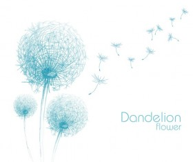 Dandelion flower illustration vector