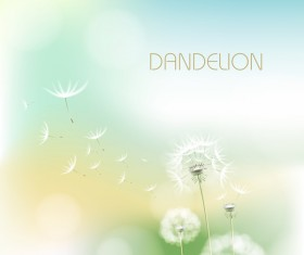 Dandelion flower with blurs background vector