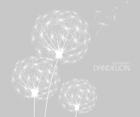 Dandelion with gray background vector 02