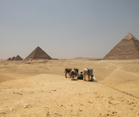 Egypt travel, pyramid Stock Photo 01