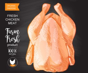 Farn fresh chicken meat poster vector 01