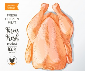 Farn fresh chicken meat poster vector 04