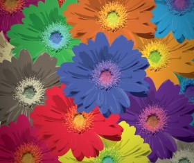 Flower bloom colors background greeting card vector