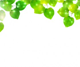 Green Leaves and blank background vector 01