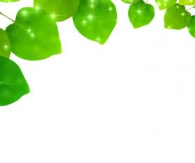Green Leaves and blank background vector 02
