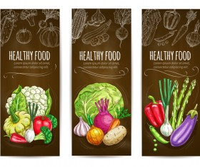 Healthy vagetables vertical banners vector