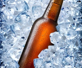 Ice cubes and beer Stock Photo 05
