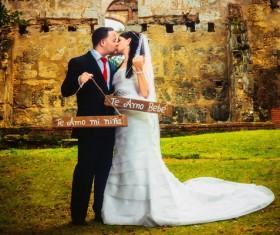 Kissing wedding photos Stock Photo