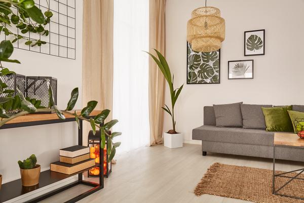 Living Room Interior Small Decorative Plants Stock Photo 02 Part 70