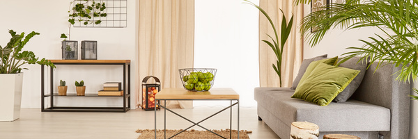 Living Room Interior Small Decorative Plants Stock Photo 14 Part 92