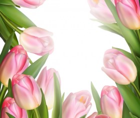 Pink tulips frame vector material