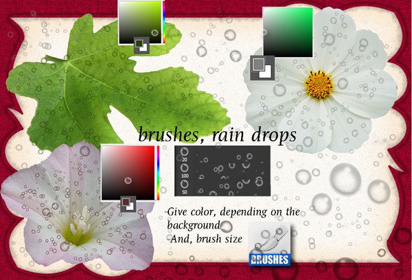Rain Drops photoshop brushes