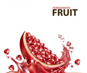 Realistic pomegranate fruit illustration vector 10