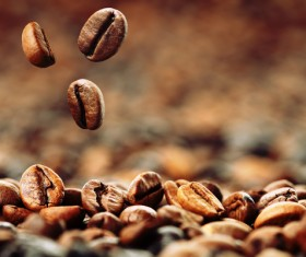 Roasted coffee beans Stock Photo 01