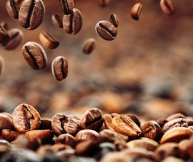 Roasted coffee beans Stock Photo 02