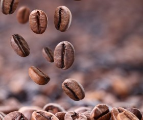 Roasted coffee beans Stock Photo 03