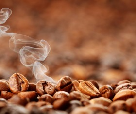 Roasted coffee beans Stock Photo 04