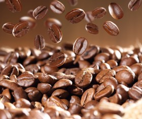 Roasted coffee beans Stock Photo 06