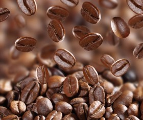 Roasted coffee beans Stock Photo 07