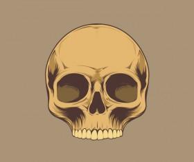 Skull retro illustration vector