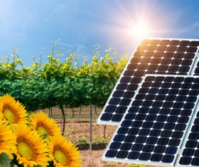 Solar panels and agriculture Stock Photo