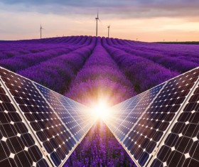 Solar panels with lavender farmland Stock Photo