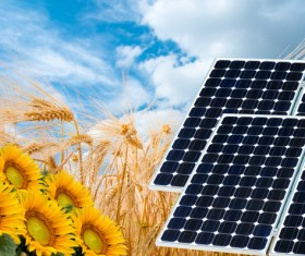 Solar panels with sunflowers Stock Photo