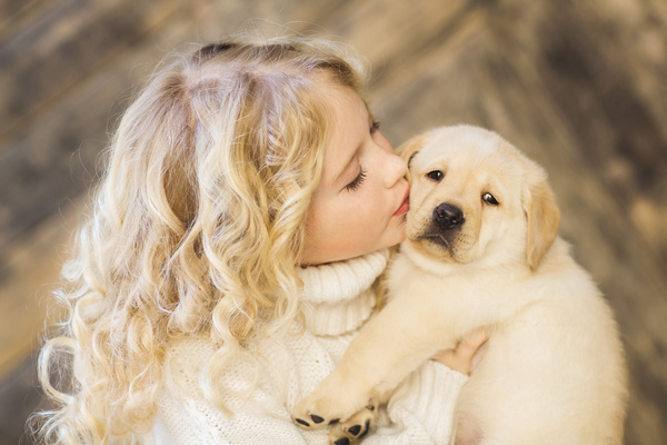 Stock Photo The little girl and Labrador 04