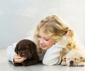 Stock Photo The little girl and Labrador 06
