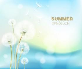 Summer dandelion background vector